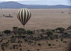 Ballon over Serengeti 2 (raddox) Tags: africa tanzania serengeti balloon