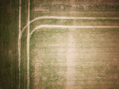 Perpendicular (17) (David Gyselaers) Tags: drone lines agriculture