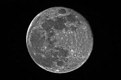 Vollmond (Michael Döring) Tags: gelsenkirchen bismarck marschallstrase mond vollmond moon luna lune tc14eii afs200500mm56e d7200 michaeldöring