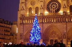 153 Paris décembre 2018 - le Sapin devant Notre-Dame de Paris (paspog) Tags: paris france hiver winter décembre december dezember 2018 sapin notredamedeparis cathédrale cathedral kathedral dom cathédralenotredamedeparis