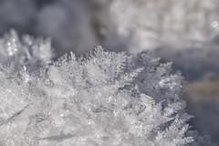 Schneekristalle (stefangruber82) Tags: winter snow schnee snowflake ice crystal alpen alps tirol tyrol