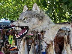 Wolf at Market (cowyeow) Tags: armenia caucuses market touristtrap travel city street urban business wolf skin dead stuffed scary creepy garni odd