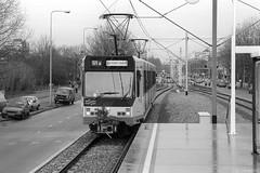 Openingstram Amstelveenlijn (Tim Boric) Tags: amstelveenlijn amsterdam amstelveen uilenstede halte sneltram lijn51 tram tramway streetcar strassenbahn interurban überlandbahn gvb bn opening