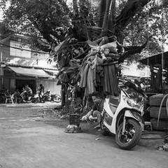 (oxo oxo) Tags: superfujicasix fuji fujica mediumformat camera foldingcamera ilforddelta100 ilford delta100 expired expiredfilm film 120 6x6 blackwhite blackandwhite bw monochrome bangkok analog streetphotography ishootfilm filmisnotdead filmcamera filmphotography
