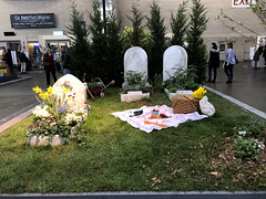 In Fair Verona (baccarati) Tags: flowershow phs philadelphiaflowershow flowers convention showcase philly tradeshow philadelphia pennsylvaniaconventioncenter pennsylvania cemetery graves graveyard macabre funereal funeral funeralhome picnic goth gothkids romeoandjuliet