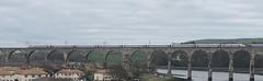 London North Eastern Railway 800103 (27/03/2019) (CYule Buses) Tags: royalborderbridge eastcoastmainline londonnortheasternrailway lner hitachi class800 800103