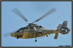 _DSC0883 (damienfournier18) Tags: hélicoptère lynx marinenationale baseaérienne baseaéronavale pilatus phenom eurocopter ec135 militaire aéronef avion aéroport arméedeterre arméedelair hélicoptèredefrance jetdaffaire jetaviation jetprivé aéronautique