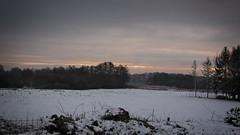 Winter Landschaft - 2019:01:21 10:48:57 - Stolpe - Schleswig-Holstein - Deutschland (torstenbehrens) Tags: winter landschaft 20190121 104857 stolpe schleswigholstein deutschland olympus ep1 lumix g 20f17 ii