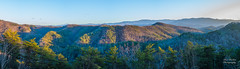 """""""Missing Link""""  Smokies Panorama (Ron Harbin Photography) Tags: great smoky mountains national park gsmnp cades cove landscape frame full fx outdoor f28 24mm d750 nikon copyright black blue green tree lightroom diffused light shade natural depth field picture winter 2018 escape fairytale wonderland forest photographer golden hour travel sun prime road missing link foothills parkway east tennessee"""