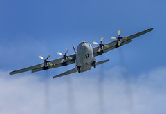 SAAF C-130 Hercules (Arranion) Tags: