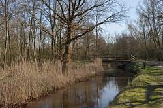 2019 België 0041 Achel (porochelt) Tags: achel belgië b limburg belgium belgien belgique bélgica
