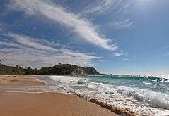 All mine (OzzRod) Tags: gopro hero7 coast shoreline seaside beach waves swash clouds cirrus barraggabay nswfarsouthcoast