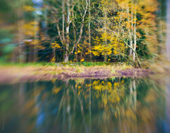 Reflections (Elisafox22) Tags: elisafox22 sony nex6 lensbaby composerpro 50mm optic doubleglass trees tree loch water reflections bokeh autumn outdoors fyvie fyviecastle fyvieloch aberdeenshire scotland elisaliddell©2019