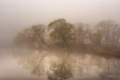 Mystical (Uwe Weigel) Tags: fog nebel landscape mystical landscapephotography photographer tree water colors view