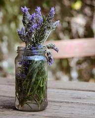 Lavandas (Irene Carbonell) Tags: lavandas lavender flores flowers nature naturaleza 50mm nikon