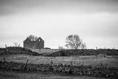 Old abandoned barn (Rob A Dickinson) Tags: nikon d7100 nikkor24120mmf4 derbeyshire peak district lead mine blackandwhite monochrome crumbling barn tree abandoned decayed unused
