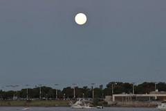 Super luna (-:tavo:-) Tags: luna eclipse santa fe setubal roja