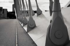 Vérins (Atreides59) Tags: lyon rhone rhône france urban urbain street pont bridge noir blanc nb noiretblanc black white bw blackandwhite atreides atreides59 cedriclafrance