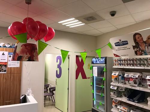 Heliumballonnen Dierenkliniek Spijkenisse