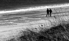 Beach Stroll (gcobb84) Tags: mono people beach sand grass
