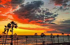Sunset 11-2-19-19 (rod1691) Tags: oceanside california colors sky clouds palmtrees beach surf canon 50d