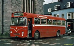 DBO 341C National Bus Company NBC Western Welsh U3365 (ex Red & White) Leyland Tiger Cub with Park Royal body in Brecon Sept84 (Copy) (focus- transport) Tags: buses coaches national bus company nbc east midlands western welsh united wessex trent red white yorkshire devon general bristol kent wilts dorset london counties lincolshire road car alder valley crosville southdown west northern leyland leopard olympian tiger cub atlantean willowbrook eastern coachworks ecw plaxton park royal alexander roe mcw metrocammell mw ld lodekka vrt ls5g sc4lk rell6g daimler fleetline crg6lx aec renown