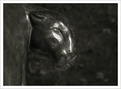 Das Tier - Sinnbild des Göttlichen (Norbert Kaiser) Tags: ausstellung schlosssonnenstein festungsonnenstein bastionen pirna sachsen saxony skulpturen skulpturensommer2019 tier dastiersinnbilddesgöttlichen kunst museum skulturensommer blackwhite schwarzweiss bnw