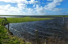 Land unter (antje whv) Tags: bensersiel ostfriesland wasser water zaun fence wolken clouds hochwasser