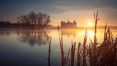 Good morning Moritzburg (mad_airbrush) Tags: ngc 5d 5dmarkiii 2470mm 2470mmf28lusm 2470mmf28l germany deutschland saxony sachsen longexposure landscape langzeitbelichtung landschaft sun sunrise moritzburg schlossmoritzburg water smoothwater reflection reflektion filter nd ndfilter haida haidafilters formatthitech stackedfilters morning morgens sonnenaufgang 600uhr