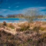 La Dombes et  l'un de ses étangs... thumbnail