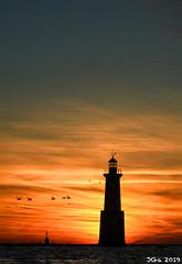Burning Lighthouse... Île Tudy, Finistère, France. 2019/01/04. (joelgambrelle) Tags: brantabernicla bernaches commonbrantgoose nikond500 burningsky catchycolors sea sunrise phare lighthouse laperdrix îletudy eneztudy
