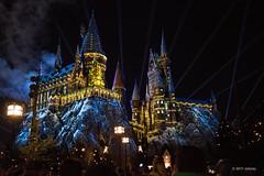 Christmas at Hogwarts (ddindy) Tags: hogwarts hogsmeade christmas harrypotter wizardingworldofharrypotter islandsofadventure universalorlando universalstudiosorlando orlando florida