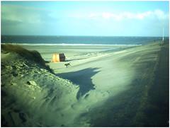 Neingrenze *276 (KKS_51) Tags: neingrenze5000t holland zeeland dunes dünen