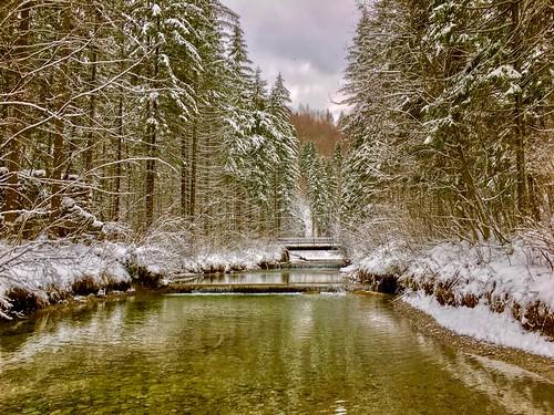 Gießenbach in winter near Kiefersfelden, Bavaria, Germany