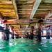Underwater at Portsea Pier-9
