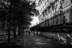 Vienna, Ringstrasse (gotan-da) Tags: blackwhite schwarzweiss noiretblanc blackandwhite bw monochrome ringstrasse vienna