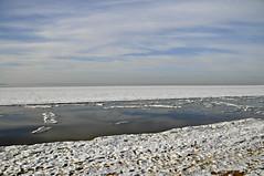 Frozen Chesapeake (Throwingbull) Tags: chesapeake bay terrapin beach park winter snow ice frozen kent island stevensville md maryland