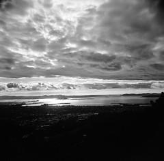San Francisco Bay from Grizzly Peak, Berkeley (Timothy Lewis Jr.) Tags: holgaphotos holga120n blackandwhite blackandwhitefilm berkeley bw analoguefilm kodaktrix trixpushed2stops clouds orange filter
