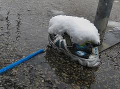 Snow Shoe (arbyreed) Tags: arbyreed snow winter cold shoe abandonedshoe lostshoe lostsneaker forgotten snowshoe