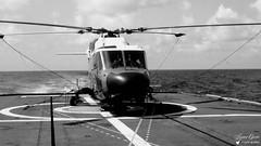 Westland Lynx WG 13 (Laurent Quérité) Tags: canonfrance canonae1 noirblanc blackwhite helicoptere aviation aéronef aéronavale aéronautiquenavale frenchnavy aircraft marinenationale militaryaircraft westland lynxwg13