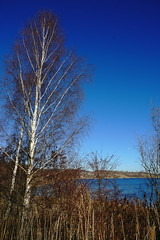 DSC04744 (bluesevenxp) Tags: geiseltalsee mücheln marina lake see ufer floating