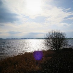 IMG_20190217_165330_600 (lindarees2) Tags: reservoir water blue sky sunshine trees