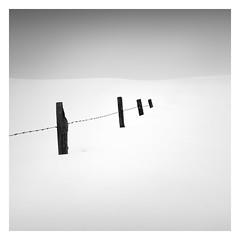 Winter - Four (Marco Maljaars) Tags: monochrome marcomaljaars poles pole winter barb wire minimalism minimal mood blackandwhite bw emptiness cold snow ice landscape