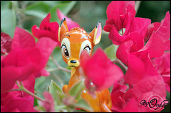 Bambi ~07 (Orphen 5) Tags: disney bambi disneybambi disneybambifigurine bambifigurine flower bambiphotoclip bambifigurineprimark bambiprimark primark london tumblr cute