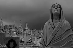 Lavagna, Cimitero Munomentale di Lavagna (Sven Kapunkt) Tags: cemetery cemeteries cimetière campo cimitero certosa monumentale friedhof friedhöfe gräber grab graveyard grabmal gothic grabstätte lavagna engel angel statue italia italien italy