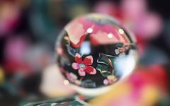 a moment of clarity (rockinmonique) Tags: orb ball kimono reflecton macro abstract red pink green orange yellow moniquewphotography canon canont6s tamron tamron45mm copyright2019moniquewphotography