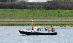 ELISABETH (kees torn) Tags: hetscheur motorboot vlet maassluis elisabeth watersport