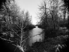 Stream (massimosvestito) Tags: landscape massimosvestito monochrome bnw blackandwhite blackwhite massimo svestito bw river water