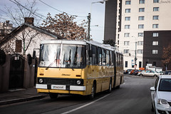 Lights on Ikarus (WT_fan06) Tags: cityscape urban street photography nikon d3400 dslr nikkon 7dwf flickr coth5 public transportation ikarus 280 ploiesti tce bus orange oldtimer retro vintage romania 2189