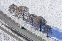 Trees In A Row - 14 (Aerial Photography) Tags: by la ndb 06012017 5sr22740 auto autos baum baumreihe bavaria bayern braun buchaerlbach bäume deutschland diagonale farbe fotoklausleidorfwwwleidorfde fotoklausleidorfwwwleidorfaerialcom fünf germany grafik grau landscapeandnature landschaft landschaftnatur laubbaum luftaufnahme luftbild niedererlbach p1 pkw region schnee stimmung weis winter aerial automobile brown car cars color colour deciduoustree diagonal five foliagetree graphicart graphics grey landscape landscapenature leaftree lineoftrees mood nature outdoor rowoftrees snow tree trees white buchaerlbachlkrlandshut bayernbavaria deutschlandgermany deu